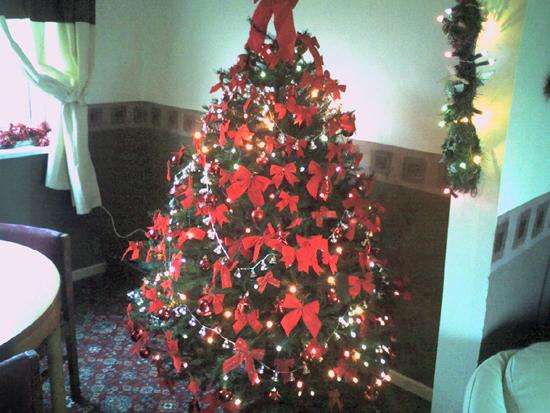 Susanne's tree